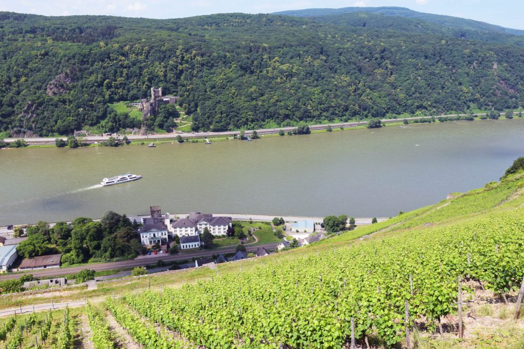 Rhine steep slope Hoellenberg castle